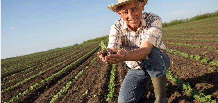 La alianza que beneficia a los campesinos colombianos