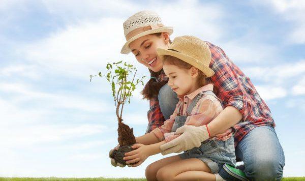 ¿Cómo ayudar al cuidado del agua y los bosques? ¡El futuro está en tus manos!