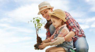 ¿Sabías que solo con jugar en tu dispositivo puedes ayudar a la conservación del medio ambiente? ¡Descubre cómo!
